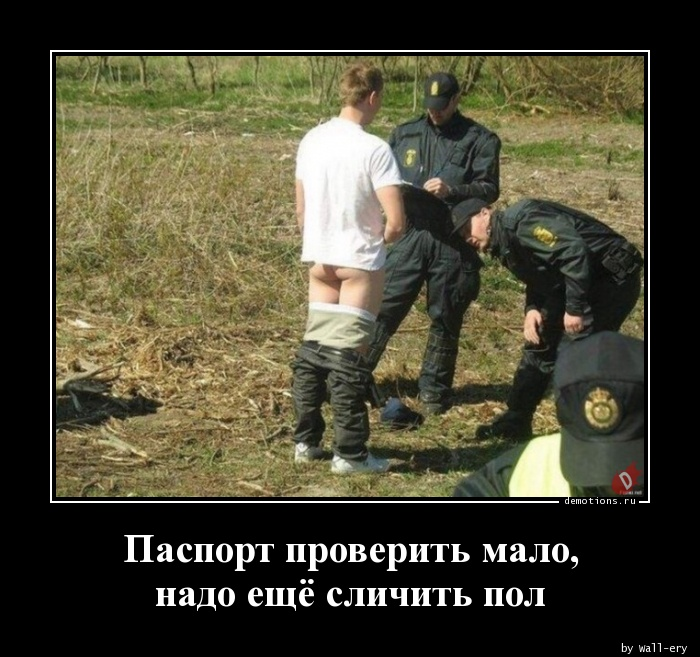 1514523813_Pasport-proverit-mal_demotions.ru.jpg